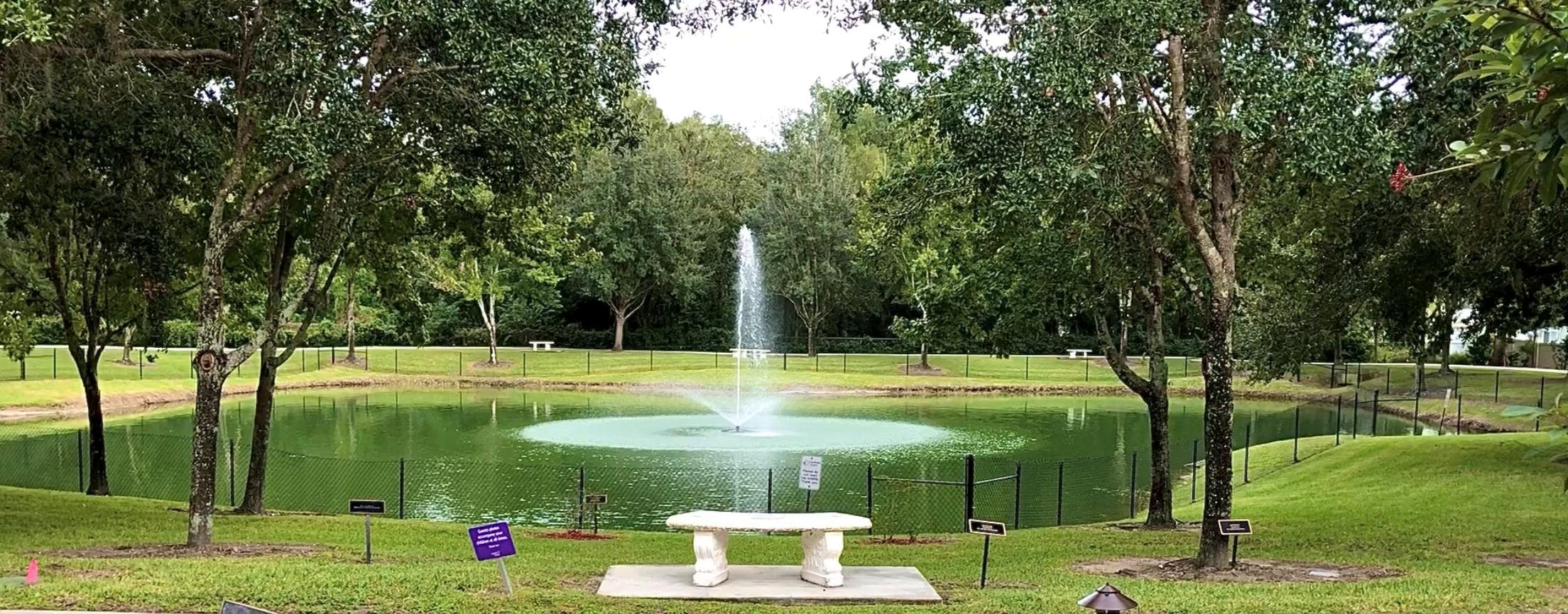Rucki Pond Wide Shot